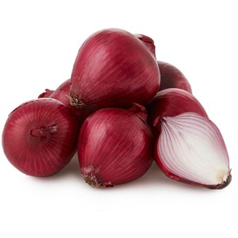 Big-Onion 500 gms