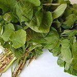 Greens(Mulai/Thandu Keerai)